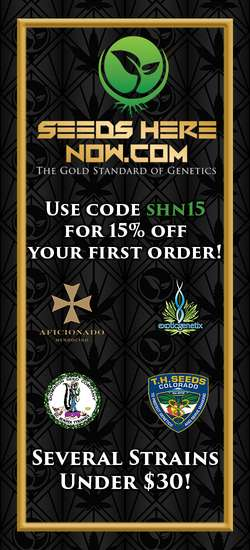 Seeds Here Now Coupon Code. 15% off entire online order with no Exclusions!