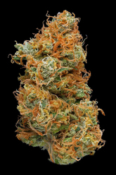 Sour Tangie on Slyng.com
